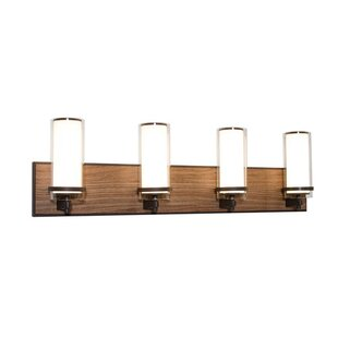 Union Rustic Makela 4-Light Vanity Light