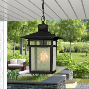 Compare prices Valeri 1-Light Outdoor Hanging Lantern By Beachcrest Home
