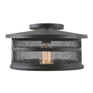 Read Reviews Renay 1-Light Outdoor Semi Flush Mount By Williston Forge