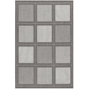 Zachary Gray Indoor/Outdoor Area Rug