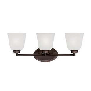 Millennium Lighting Franklin 3-Light Vanity Light