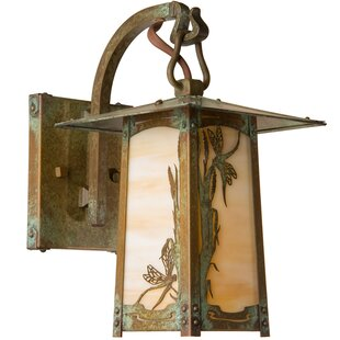 Great choice Dever 1-Light Outdoor Wall Lantern By World Menagerie
