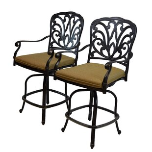Darby Home Co Bosch Patio Bar Stool with Cushion (Set of 2)