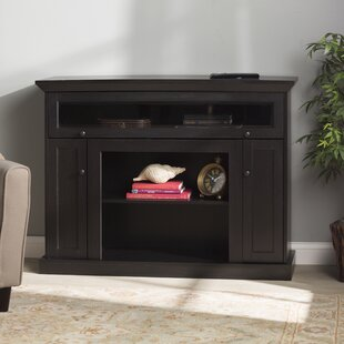 Affordable Price Carty TV Stand for TVs up to 43 by Winston Porter Reviews (2019) & Buyer's Guide