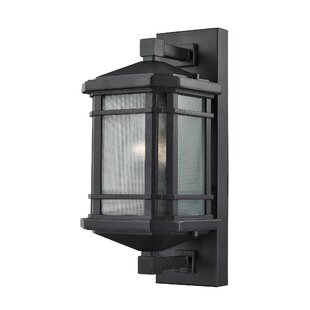 Read Reviews Colyt 1-Light Outdoor Wall lantern By Charlton Home