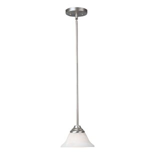 Vidaurri 1-Light Cone Pendant by Winston Porter