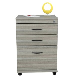 Winston Porter Galgano Locking 3 Drawer Mobile Vertical Filing Cabinet