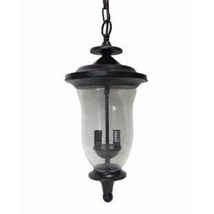 Charlton Home Myerstown 1-Light Outdoor Hanging Lantern
