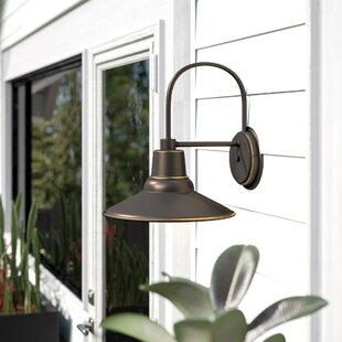 Comparison Chew 1-Light Outdoor Barn Light By Ebern Designs