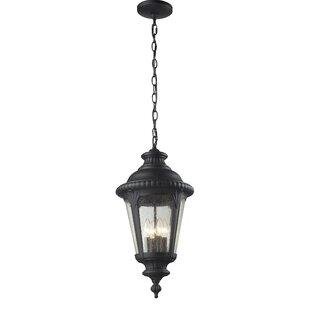 Astoria Grand Lumley 4-Light Outdoor Hanging Lantern