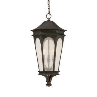 Capital Lighting Inman Park 3-Light Outdoor Hanging Lantern