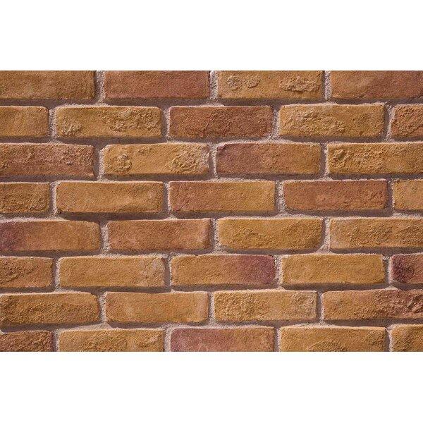 Faceables Old Brick 3 X 8 Cement Subway Tile Wayfair