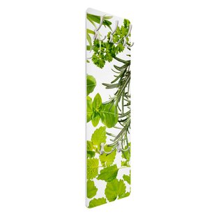 Various Herbs Wall Mounted Coat Rack By Symple Stuff