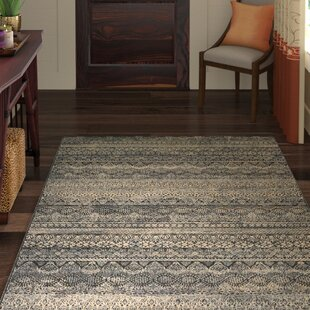 Amasa Black Gray Area Rug