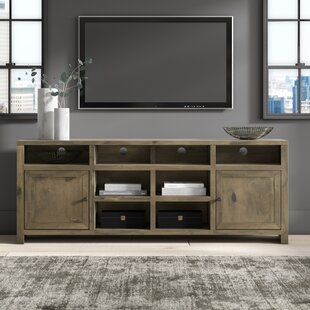Affordable Columbia TV Stand for TVs up to 78 by Greyleigh Reviews (2019) & Buyer's Guide