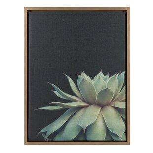 586ddf541038  Sylvie Succulent  Framed Photographic Print on Canvas. by Bungalow Rose