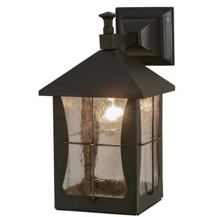 Inexpensive Greenbriar Oak 1-Light Outdoor Wall Lantern By Meyda Tiffany