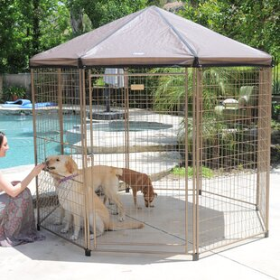 Indiana Pet Gazebo Replace..