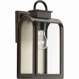Darby Home Co Colona 1-Light Outdoor Wall Lantern