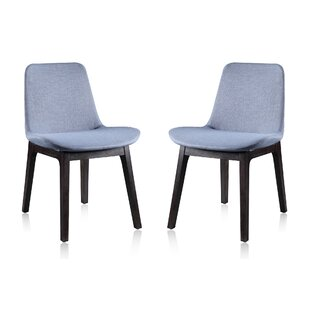 Skipworth Side Chair (Set of 2) by Brayden Studio