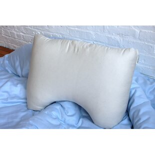 Ephraim Firm Poly-fill Standard Pillow