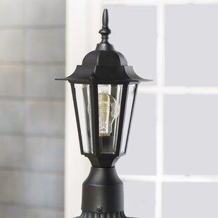 Alcott Hill Shifflett Outdoor 1-Light Lantern Head