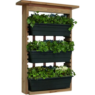 Houghton Wood Wall Planter