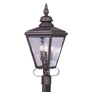 Gutierres Outdoor Lantern Head by Three Posts