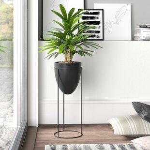 Indoor Planters You'll Love in 2019 | Wayfair