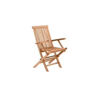 Mahesh Folding Garden Chair (Set Of 2) By Sol 72 Outdoor