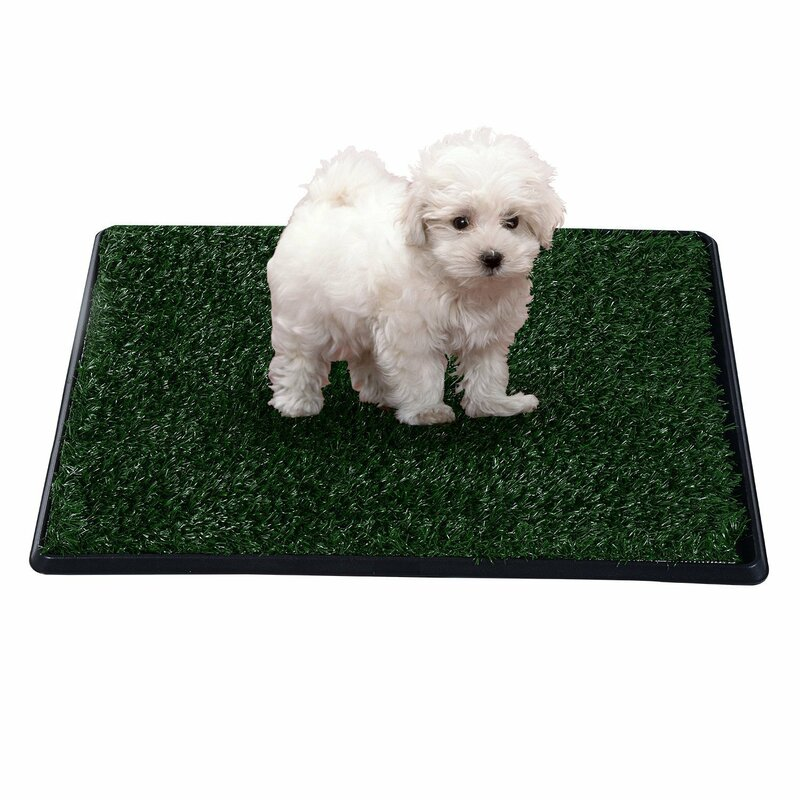 Pawhut Indoor Dog Toilet Mat in Green and Black & Reviews ...