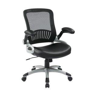 Caenas Mesh Task Chair