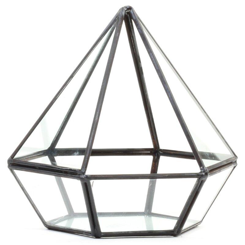 Diamond Geometric Table Glass Terrarium Reviews Joss Main