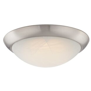 Look for 1-Light Flush Mount By Westinghouse Lighting