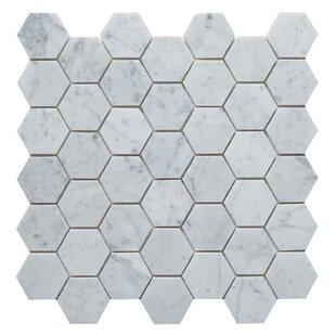 Carrara Honed Hexagon 2