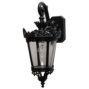 Affordable Price Phillipstown 1-Light Outdoor Wall Lantern By Alcott Hill