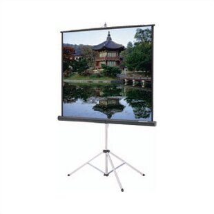 Picture King Black Portable Projection Screen