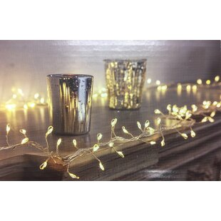 Mercury Row Wyndham Glow LED Multi-function 25 ft. 180-Light Fairy String Lights (Set of 2)