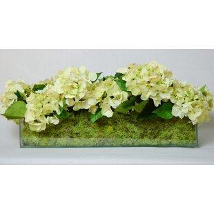 Fresh Cut Hydrangea in Rectangular Glass