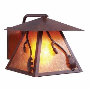 Acorn 1-Light Outdoor Wall Lantern by Ste..