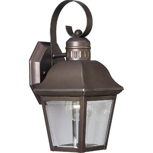 Triplehorn 1-Light Clear Wall Lantern By Alcott Hill Outdoor Lighting