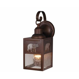 Josefina 1-Light Hardwired Outdoor Wall Lantern