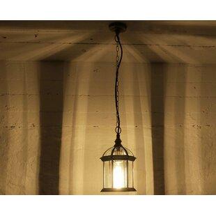 Alanna 1-Light Outdoor Hanging Lantern Image