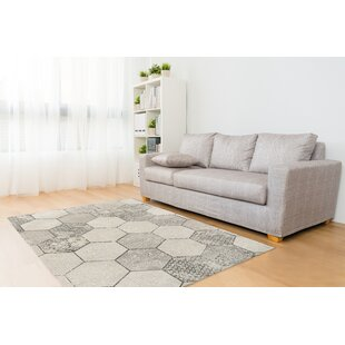 Top Reviews Hexa Gray/White Area Rug By KAVKA DESIGNS