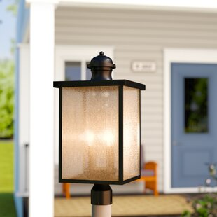Anguiano Outdoor Post Light by Darby Home Co