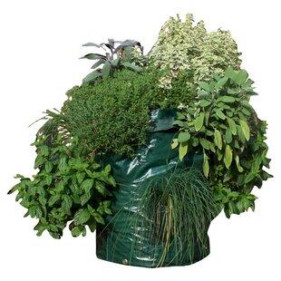 Indoor Herb Pots | Wayfair.co.uk