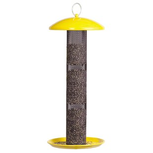 Sweet Corn Products Llc Straight Sided Finch Nyjer/Thistle Feeder