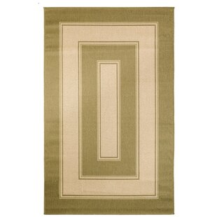 Hoyt Green Indoor/Outdoor Area Rug