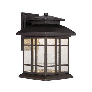 Krish 1-Light Outdoor Wall Lantern by Charlton Home