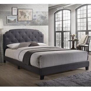 Delphine Queen Tufted Solid Wood and Upholstered Low Profile Standard Bed